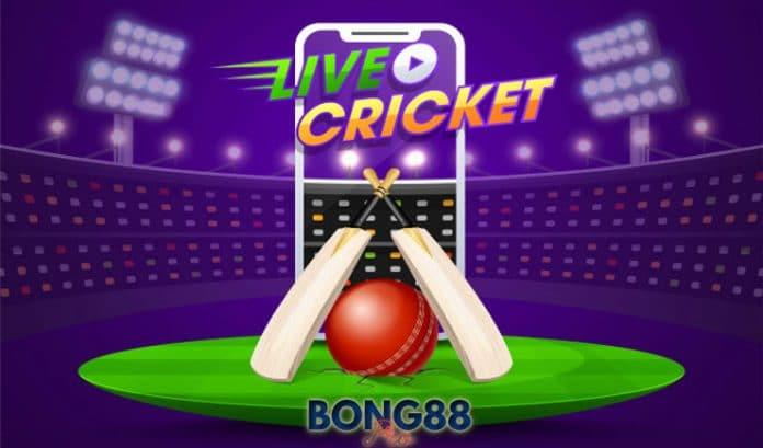 Cá cược Cricket